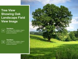Tree View Showing Oak Landscape Field View Image