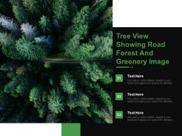 Tree View Showing Road Forest And Greenery Image