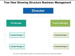 Tree View Showing Structure Business Management