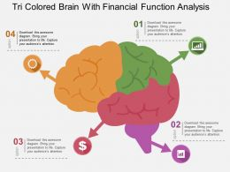 Tri Colored Brain With Financial Function Analysis Flat Powerpoint Design