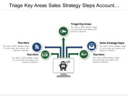 Triage Key Areas Sales Strategy Steps Account Segmentation