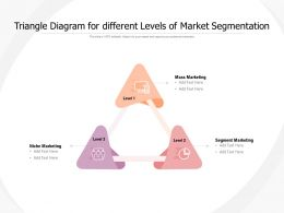 Triangle Diagram For Different Levels Of Market Segmentation