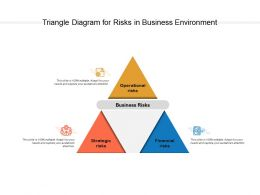 Triangle Diagram For Risks In Business Environment