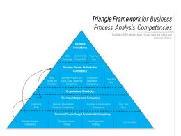 Triangle Framework For Business Process Analysis Competencies