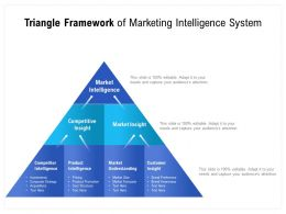 Triangle Framework Of Marketing Intelligence System