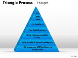 Triangle Process 7 Stages Of Business Process