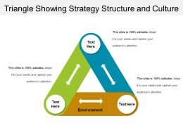 Triangle Showing Strategy Structure And Culture
