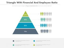 Triangle With Financial And Employee Ratio Analysis Powerpoint Slides