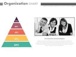 Triangle With Percentage Organization Chart Powerpoint Slides