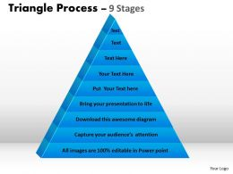 Triangular Diagram With 9 Staged For Strategy