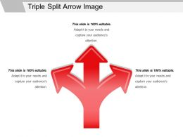 Triple Split Arrow Image Ppt Summary