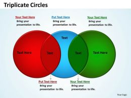 Triplicate Circles Diagram 14