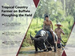 Tropical Country Farmer On Buffalo Ploughing The Field