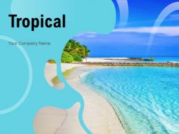 Tropical Destination Location Magnificent Tributary Tourists