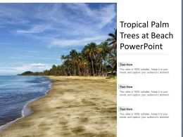 Tropical Palm Trees At Beach Powerpoint