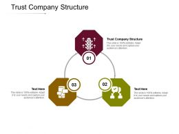 Trust Company Structure Ppt Powerpoint Presentation Slides Influencers Cpb