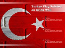 Turkey Flag Painted On Brick Wall