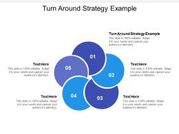 Turn Around Strategy Example Ppt Powerpoint Presentation Ideas Infographic Cpb