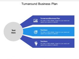 Turnaround Business Plan Ppt Powerpoint Presentation Infographic Template Cpb