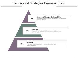 Turnaround Strategies Business Crisis Ppt Powerpoint Presentation Portfolio Templates Cpb