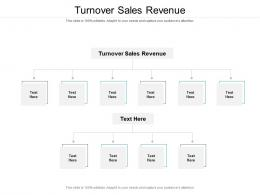 Turnover Sales Revenue Ppt Powerpoint Presentation Model Backgrounds Cpb
