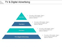 Tv And Digital Advertising Ppt Powerpoint Presentation Model Guidelines Cpb