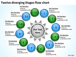 twelve diverging stages flow chart Circular Spoke Diagram PowerPoint Slides
