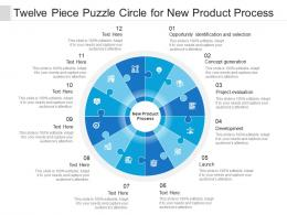 Twelve Piece Puzzle Circle For New Product Process