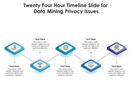 Twenty Four Hour Timeline Slide For Data Mining Privacy Issues Infographic Template