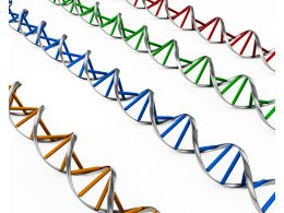Twisted Dna Structure With Multiple Colors Stock Photo