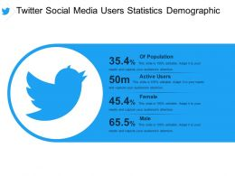 Twitter Social Media Users Statistics Demographic