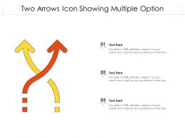 Two Arrows Icon Showing Multiple Option