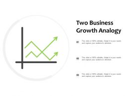 Two Business Growth Analogy
