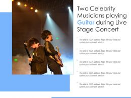 Two Celebrity Musicians Playing Guitar During Live Stage Concert