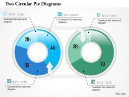 Two Circular Pie Diagrams Powerpoint Template