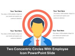 Two Concentric Circles With Employee Icon Powerpoint Slide