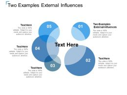 Two Examples External Influences Ppt Powerpoint Presentation Infographics Example Cpb