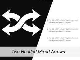 Two Headed Mixed Arrows