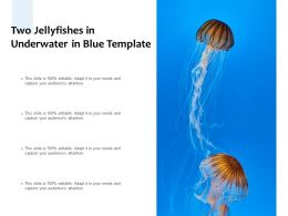 Two Jellyfishes In Underwater In Blue Template