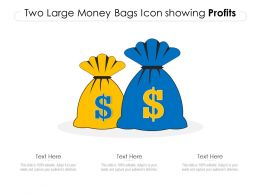 Two Large Money Bags Icon Showing Profits