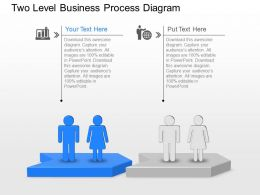 Two Level Business Process Diagram Powerpoint Template Slide
