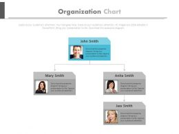 Two Level Organizational Chart For Employee Profile Powerpoint Slides