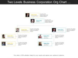 Two Levels Business Corporation Org Chart With Profile