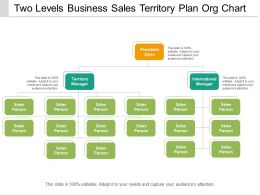 Two Levels Business Sales Territory Plan Org Chart