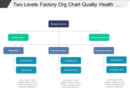 Two Levels Factory Org Chart Quality Health And Safety