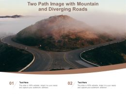 Two Path Image With Mountain And Diverging Roads