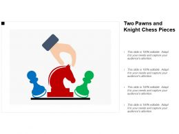 two_pawns_and_knight_chess_pieces_Slide01