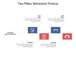 Two Pillars Behavioural Finance Ppt Powerpoint Presentation Infographic Cpb