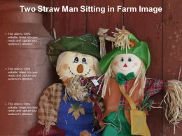Two Straw Man Sitting In Farm Image