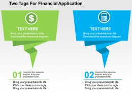 Two Tags For Financial Application Flat Powerpoint Design